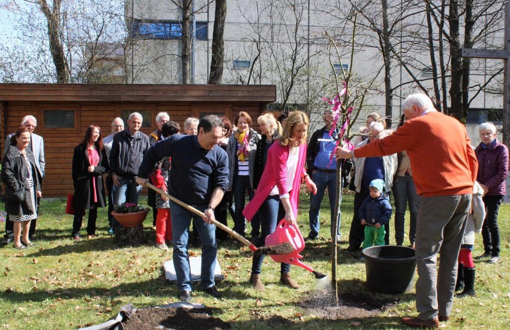 Quittenbaumpflanzung (Partnerbaum zum Echinger Lutherbaum in Wittenberg vom Oktober 2011) am 26. März 2017