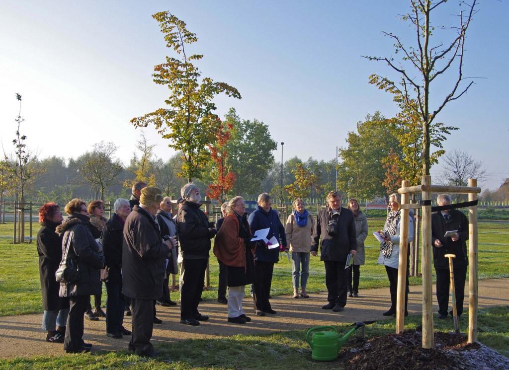 In Wittenberg wird unser Lutherbaum gepflanzt! (Oktober 2011)